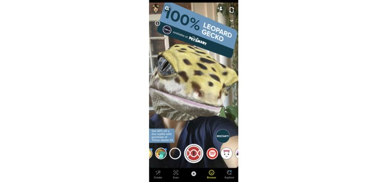 Petsmart Teams With Snapchat To Promote Reptile Keeping