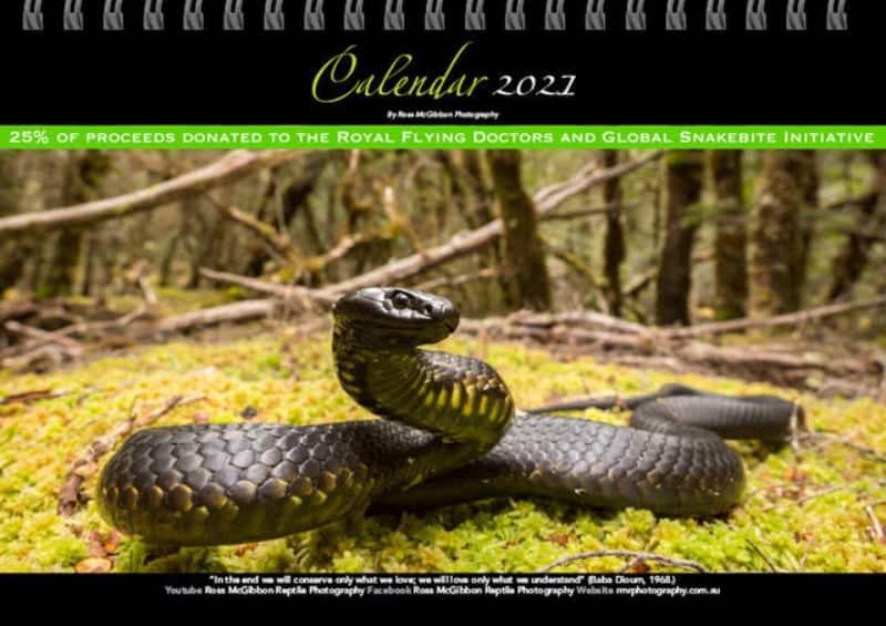 Photographer's 2021 Calendar To Benefit Global Snakebite Initiative, RFDS