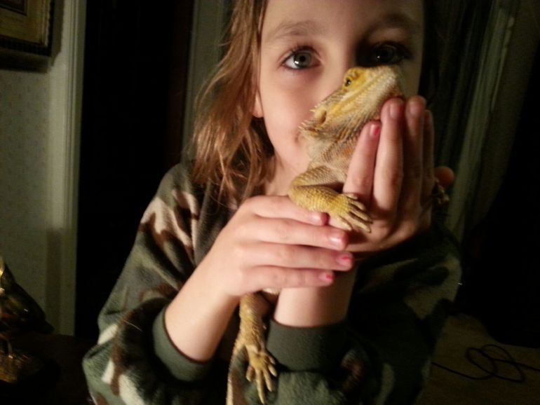 Missing Bearded Dragon Found Safe