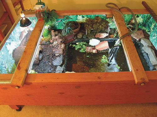 Indoor Tortoise And Turtle Table Housing