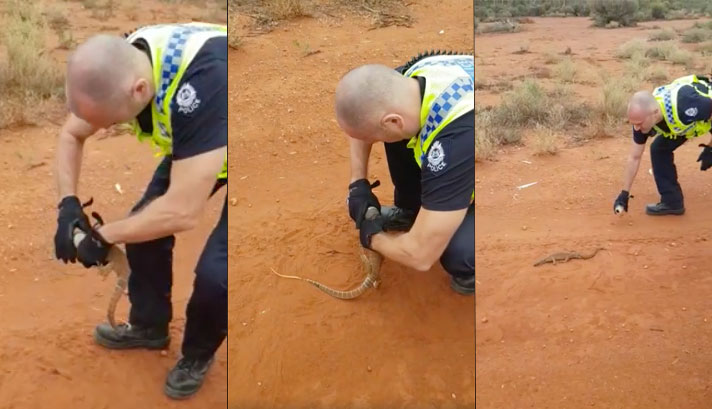 Police In Australia Goes Beyond Call Of Duty To Save Lizard Stuck In Red Bull Can